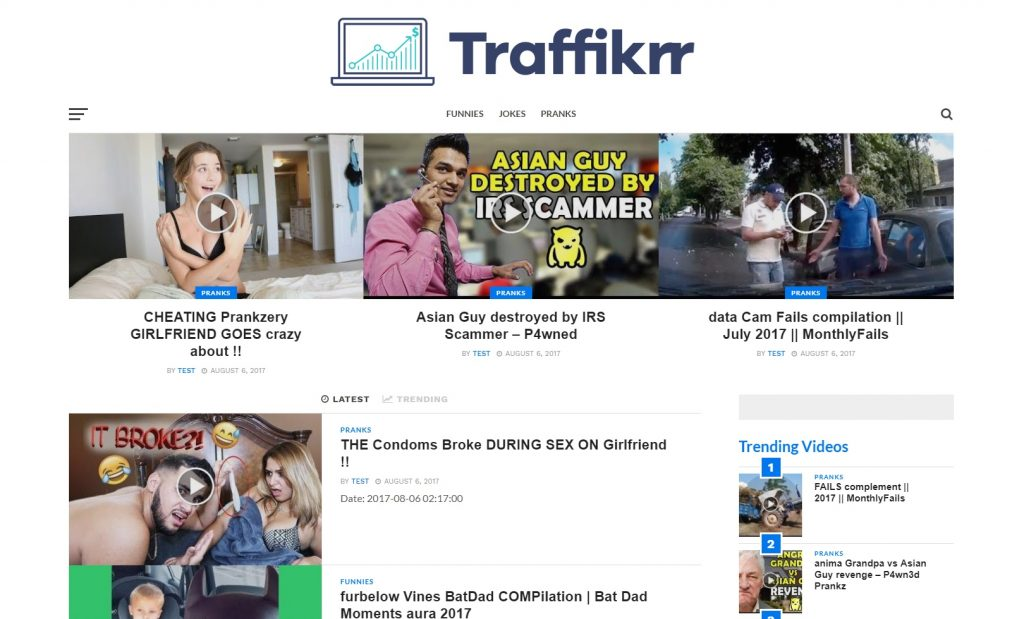 Traffikrr Review Elite Theme